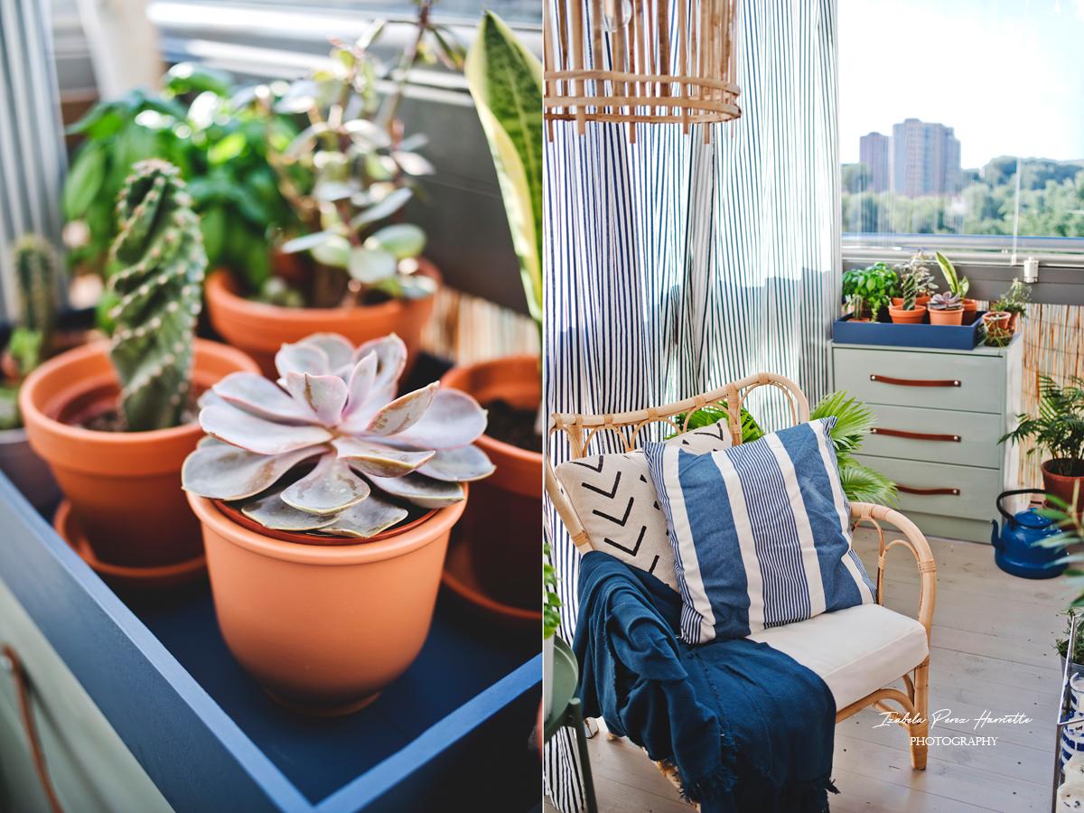sukulenty, eszeweria, terakotowe donice, ratanowy fotel, drewniana podłoga na balkonie, zasłony na balkonie