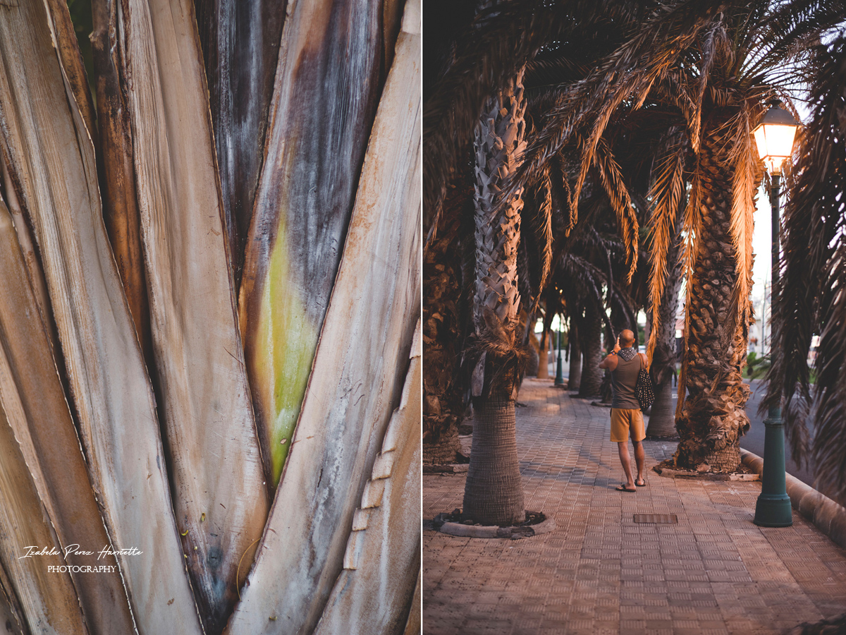 Fuerteventura all inclusive, caleta de Fuste