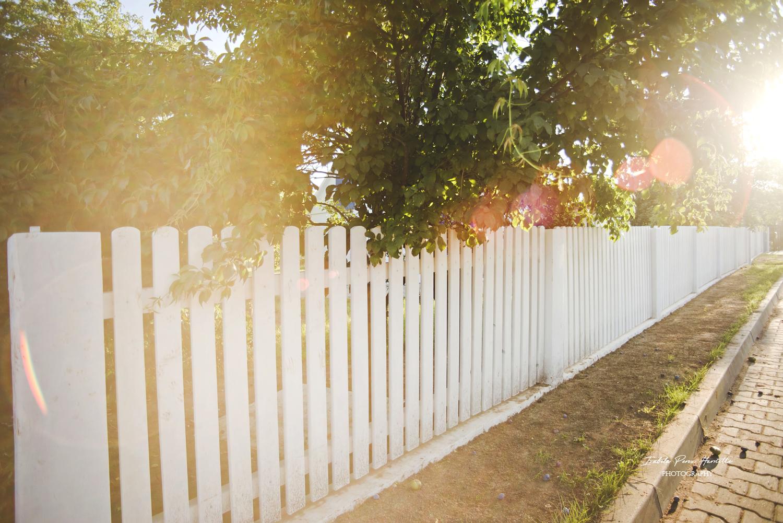 biały płot, drewniany płot, white wood fence