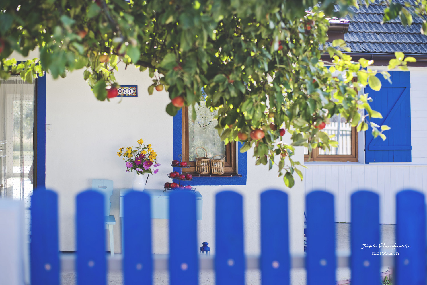 Greece in Poland, blue decor, apple tree , summer vibes